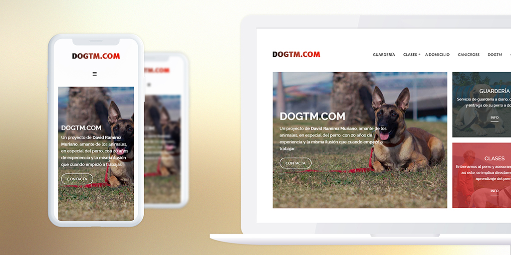 Portfolio Dogtm